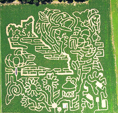 Uncle Shucks Pumpkin Patch and Corn Maze, Dawsonville, Georgia